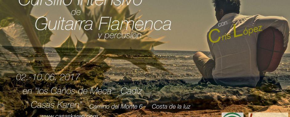 Curso Guitarra Flamenca 2-10 Junio 2017 en Casas Karen